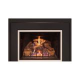 25'' DV Firep. Insert w/CMB Logs, BP Liner and Lg. 3-Side Surround - NG