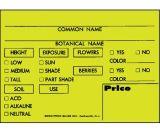 Arett P31G PMYE Plastic Card Plant Markers