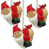 Loonie Moonie Gnome Holiday Ornament - Set of Three