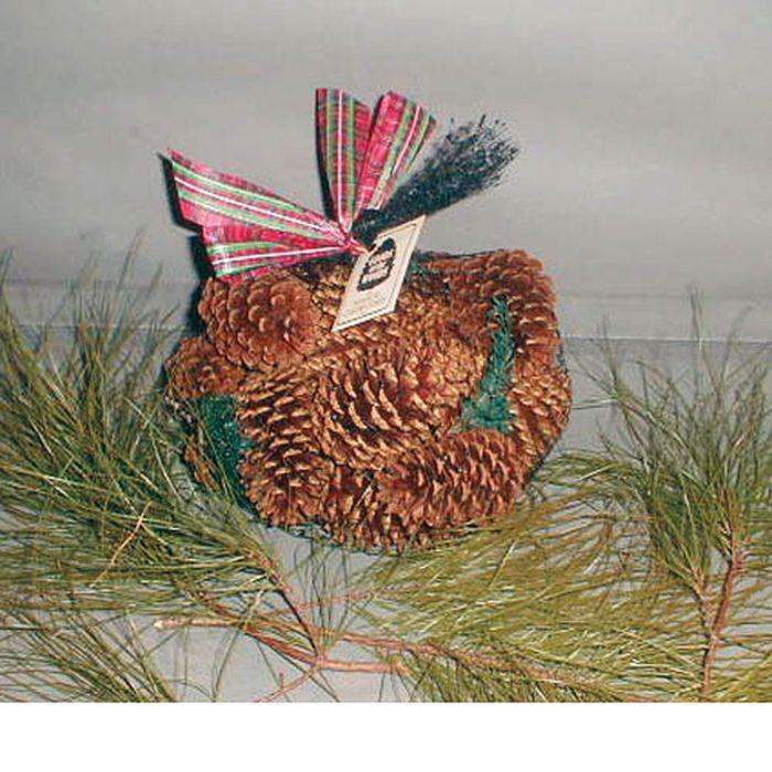 Pine Scented Cones in Bag - 1 lb. Scented Cones