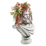 Socrates Bust Planter By Design Toscano