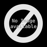 """Chimney Threaded Round Medium Duty Polypro Lite Brush - 6"""" x 3/8 NPT"""