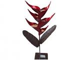 Heliconia Bird Feeder By Desert Steel