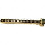 Speck Pumps 2301002023 Bolt with Hole