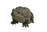 Frog Garden Statue - 5 inch By Alpine