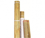 Natural Bamboo Stakes Model B07G N824