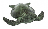 Sea Turtle TUR01 By ACHLA Designs