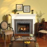 Tahoe Premium 42 DV Fireplace with Barrier Screen, LP